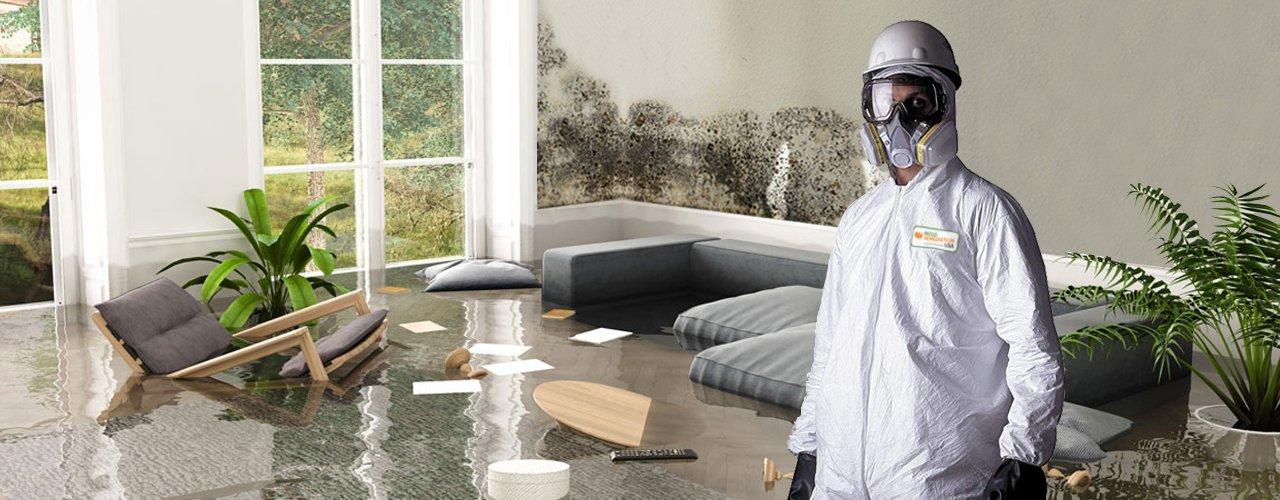 mold remediation las vegas